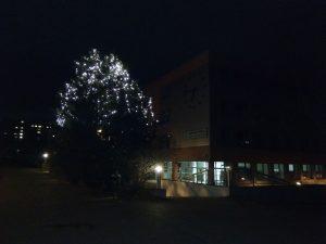Ukázkové foto (Huawei Y6 Pro)