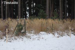 Recenze a test Canon EOS M50 - fotografie