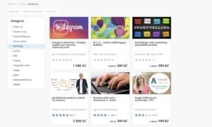 VimVic.cz online kurz recenze