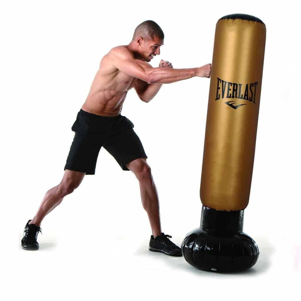 typ boxovacího pytle: trenažer