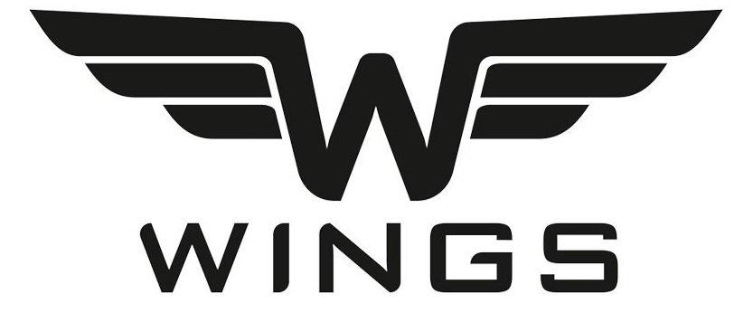 Kufr značky Wings recenze