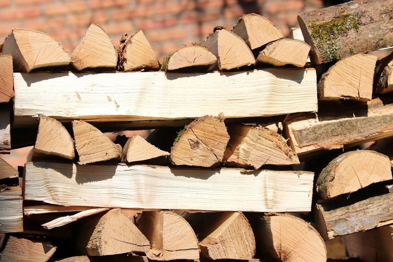 palivo dřevo