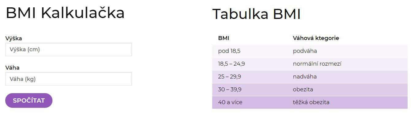 měření váhy pomocí bmi s mixslim