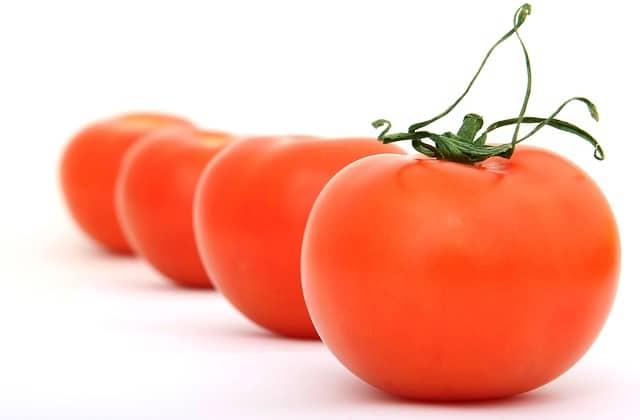 Pěstování rajčat krok za krokem: Jak vypěstovat chutná rajčata