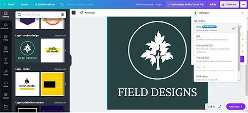 Recenze Top 10 grafických programů - Canva logo